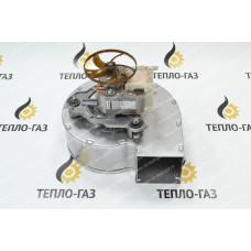 Вентилятор для котлов Baxi Nuvola-3, Eco, Luna, Nuvola (5632530)